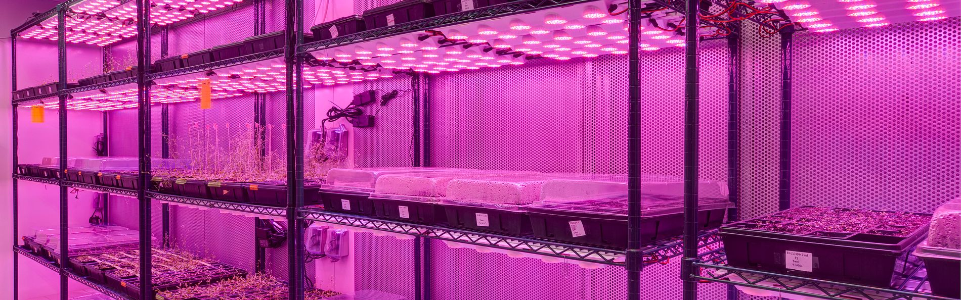Support rooms include cold rooms, dark rooms, tissue culture, growth chamber, freezer farm, crystallography, low ozone, x-ray, robotics, isotope, warm room, and plant growth