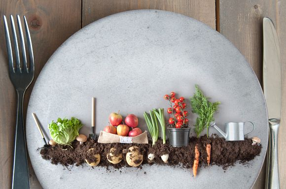 Vegetables planted in soil on a plate.