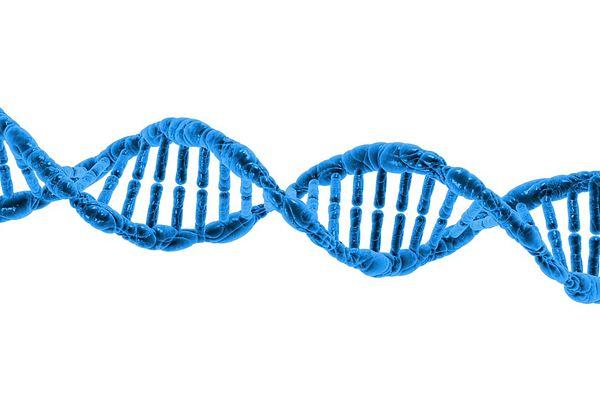 DNA Pharmacogenomics