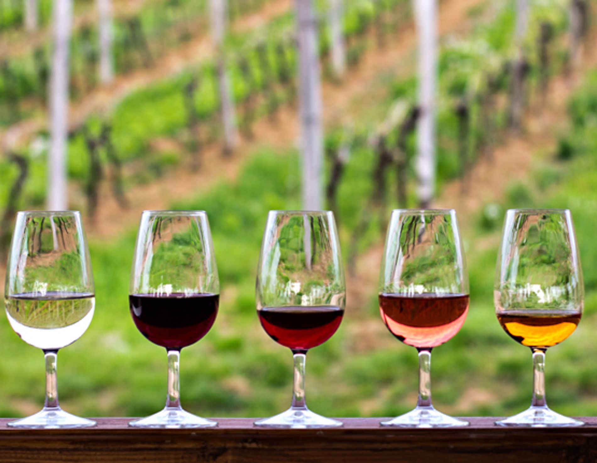 5 different wine glasses sitting on a ledge