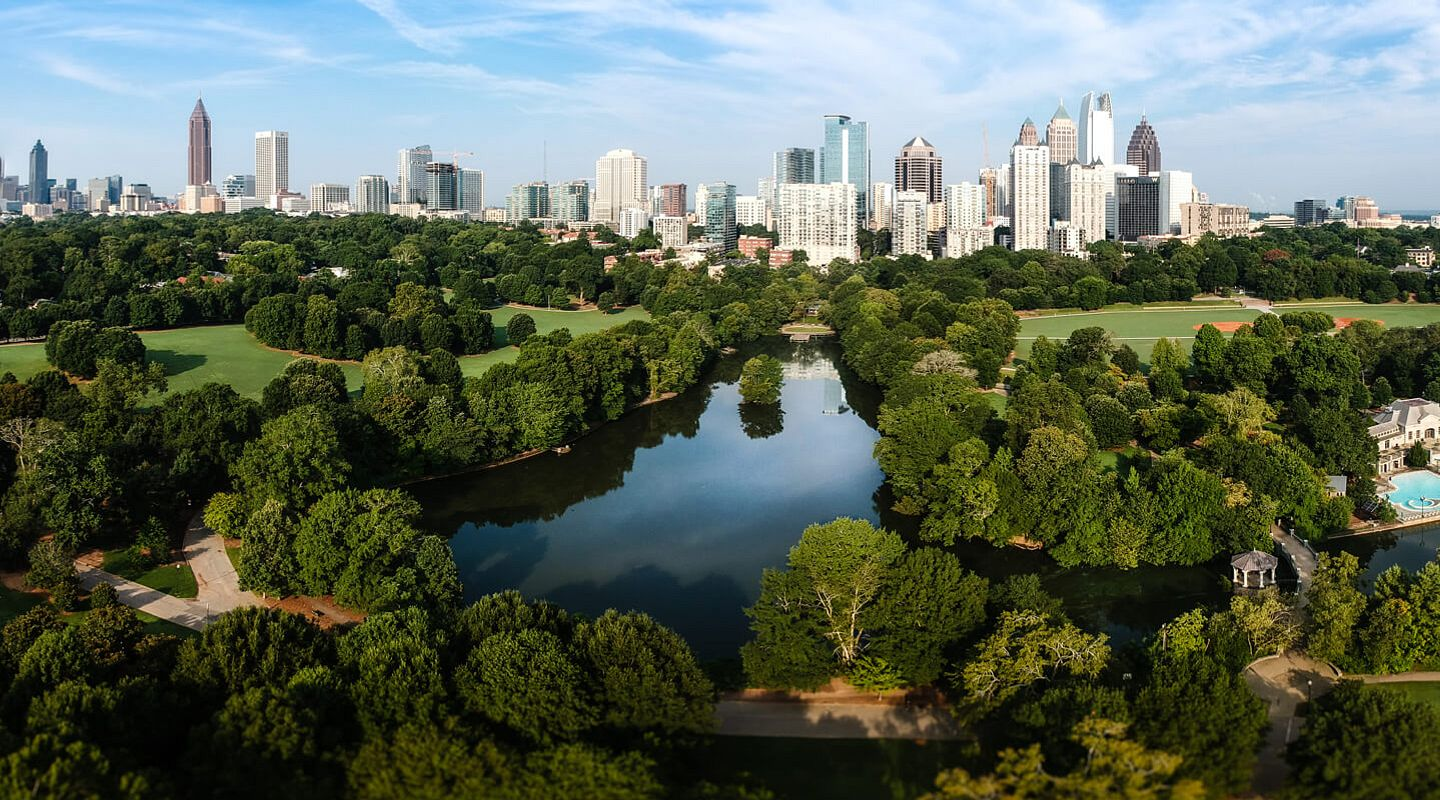 Dedicated to protecting Atlanta's urban forest